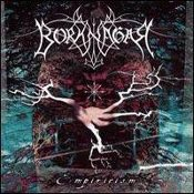 BORKNAGAR (norway)  -Empiricism   (0026)
