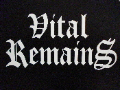 VITAL REMAINS decal...(black death)    020