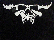 DANZIG  decal...(goth metal)    033