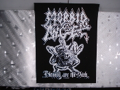 MORBID ANGEL ...Blessed Are The Sick...(death metal)     (6664)