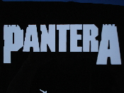 PANTERA  decal...(new metal)    013