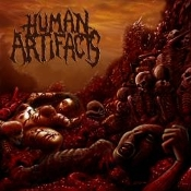 HUMAN ARTIFACTS (usa)- the principles of sickness (0036)