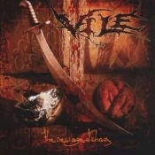 VILE  (usa) -The New Age of Chaos (0288)