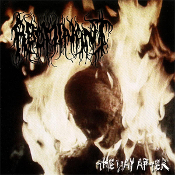 ABOMINANT ...(usa)-the way after